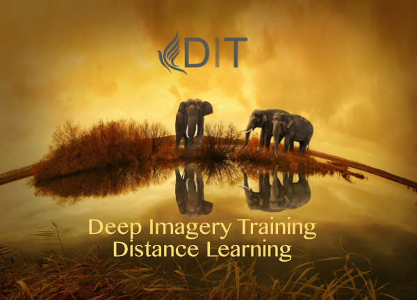 Deep Imagery Training Application 2021